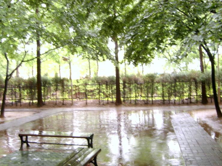 흐린 날씨의 비오는 화요일 !~~