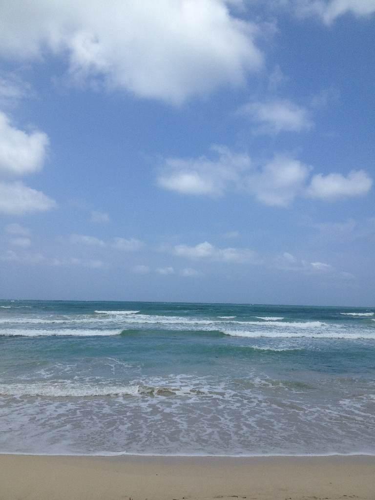 [제주올레] 월정리 바다