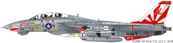 비록 VF-111 선다우너즈가 해체되었으나...