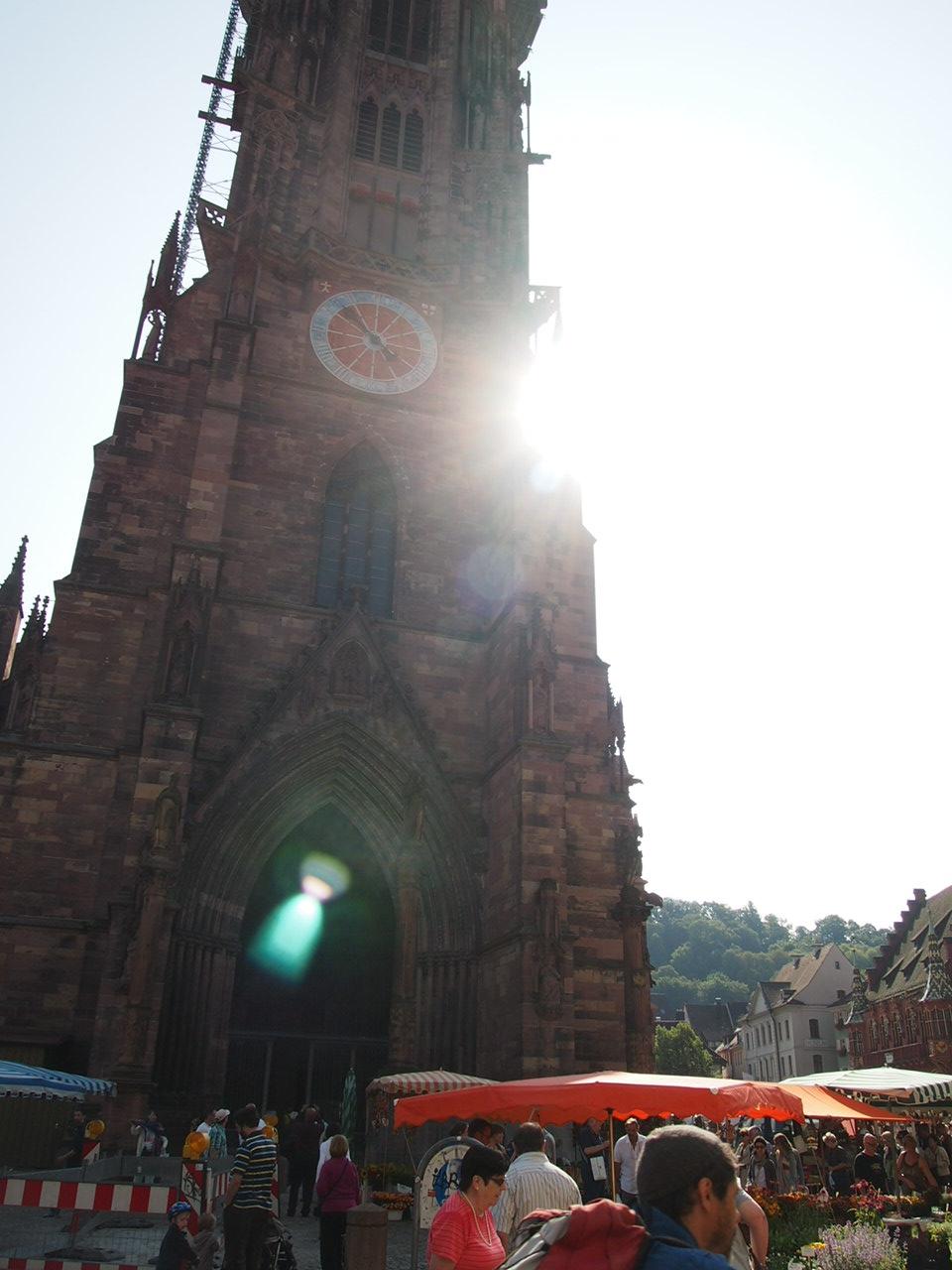 [일상] Münsterplatz의 Käsekuchen