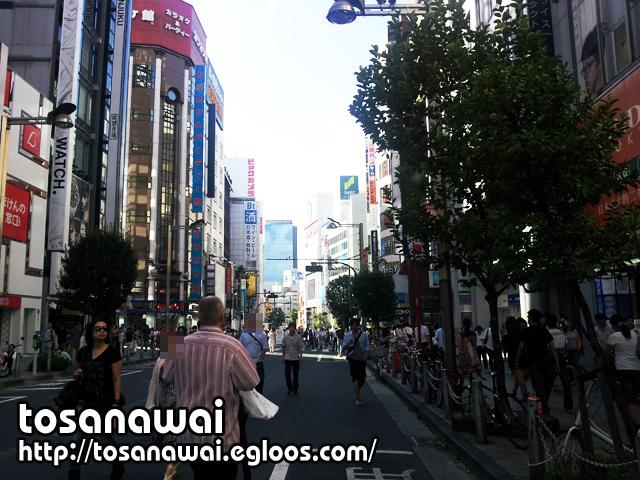 일본 워킹홀리데이 : 공휴일의 신주쿠 거리