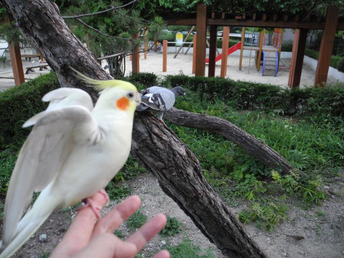 셀리와 함께하는 자연의 멋진 친구들~^&^
