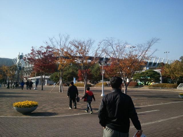 [K리그] 38R - 동해안 더비 직관. 주전과 후보의..