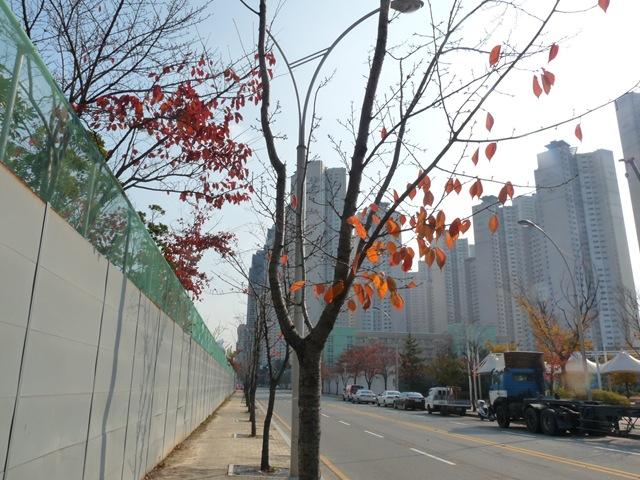 깊어가는 가을의 부산비엔날레 2012