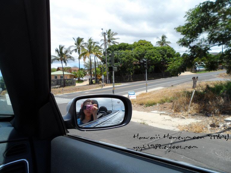 하와이 신혼여행기 (5. 이아오계곡 주립공원, Iao..