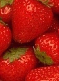 딸기칼로리  딸기효능 딸기가 먹음직스러워보여서 ..