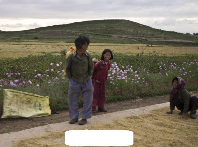 시골의 풍경은 북한이나 중국이나 심지어 한국이나..
