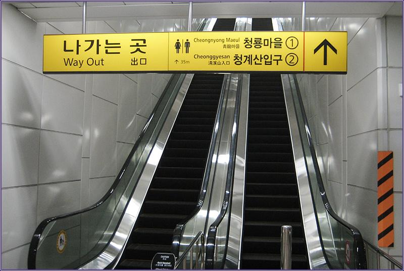13_0320 지난번 대공원 등산로 폐쇄로 못 보고 온 청..
