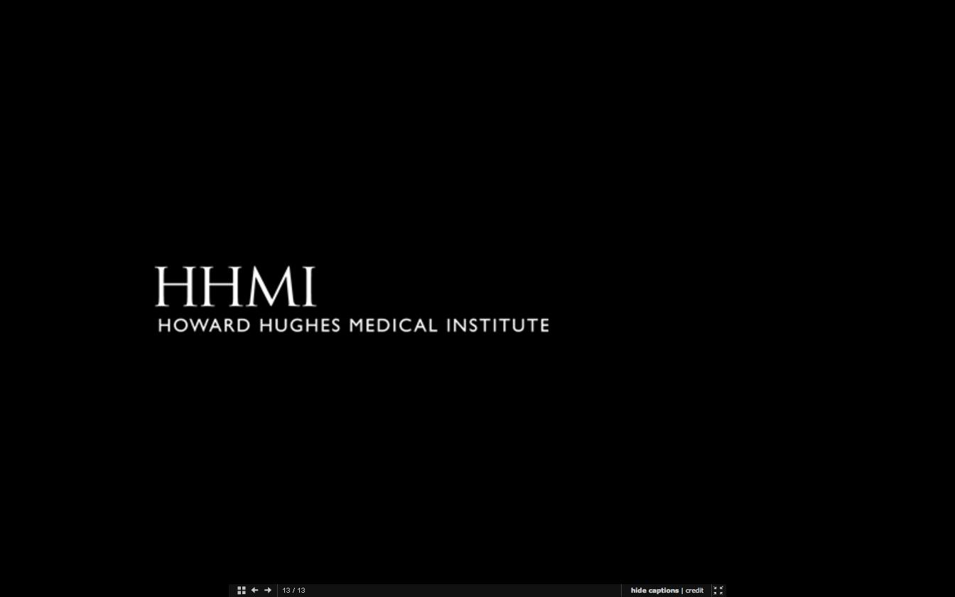 HHMI (HOWARD HUGHES MEDICAL INSTITUTE)