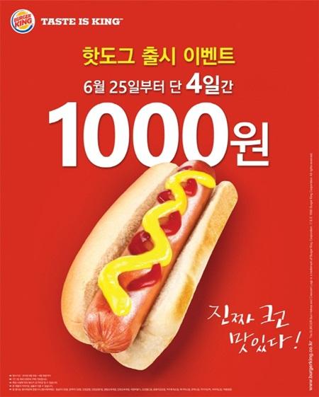버커킹 핫도그 1000원 판매 이벤트! 오늘부터!