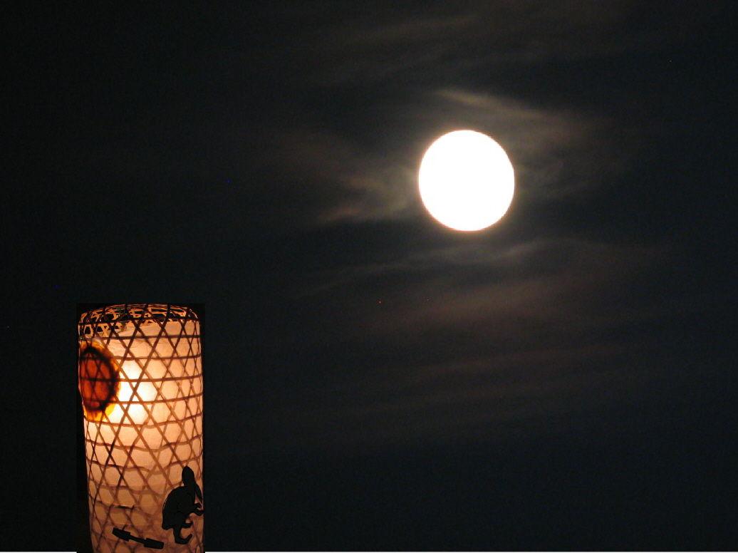 「기분 나빠(キモい)」를「달이 아름답네요」..