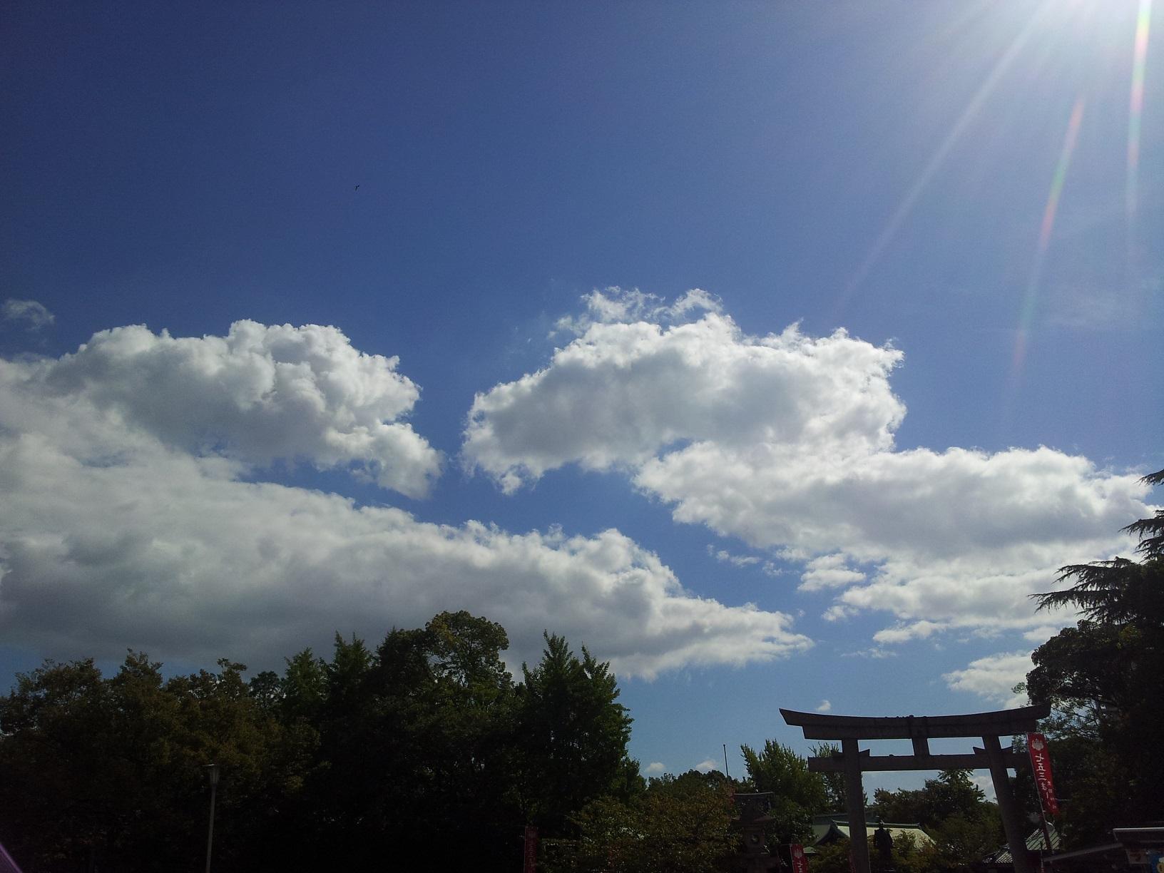 [나 홀로 오사카 여행]둘째날 - 오사카에서 맞은..