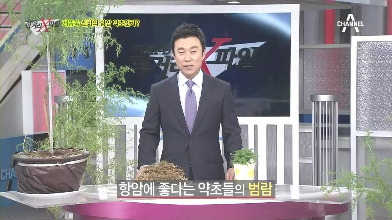 (리뷰) [채널A] 이영돈 PD의 먹거리 X파일 91회..
