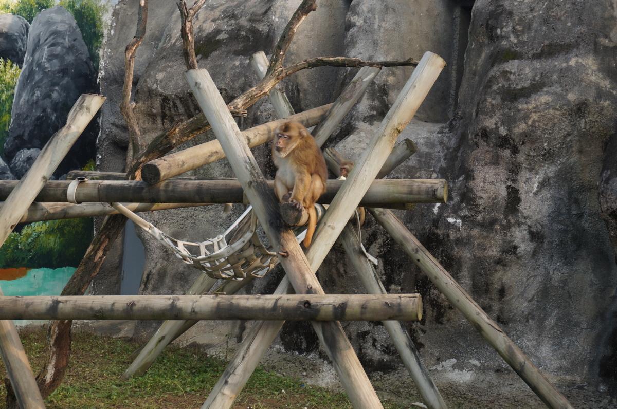 서울 어린이대공원 동물원