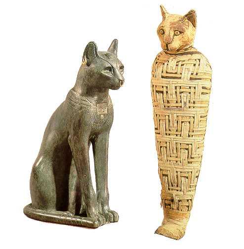 흑사병과 고양이 살처분 (2)