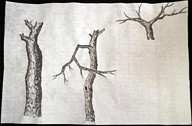 동양화 - 소나무