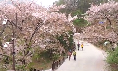 북한산 둘레길 - 내시묘역길 걷기