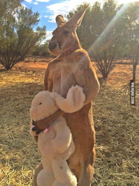 내 토끼 인형을 달라고?