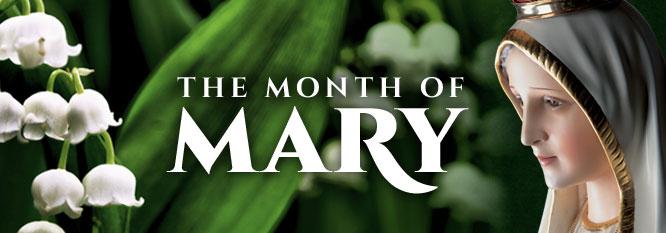 5월 성모성월 May the Month of Virgin Mary