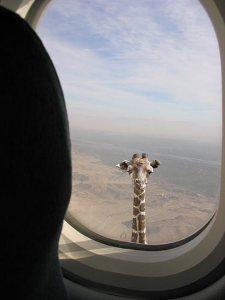 여...여긴 비행기인데...!! 창밖에!