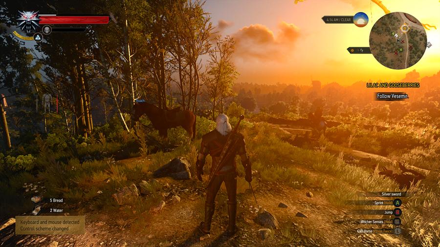 위쳐 3 와일드 헌트 (the Witcher 3 Wild Hunt)