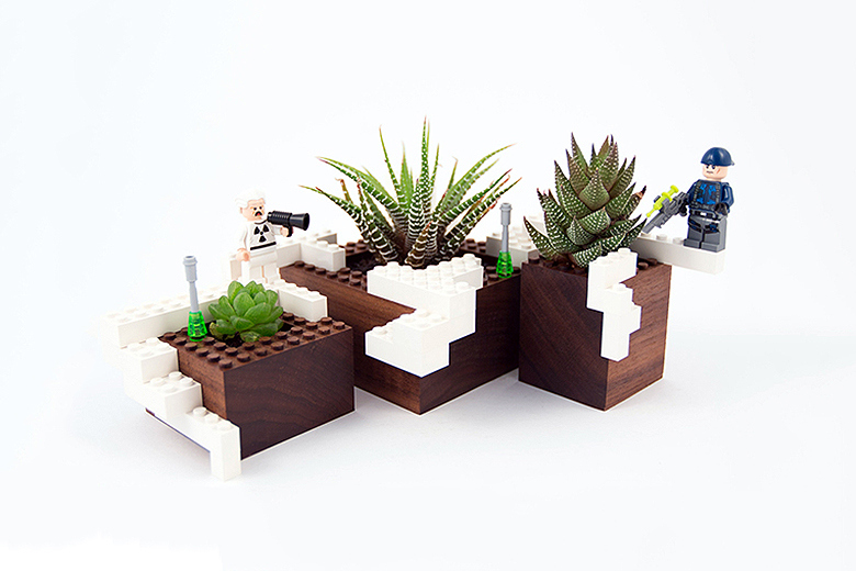 - NOTCOT Limited Edition Plant Experiment #1