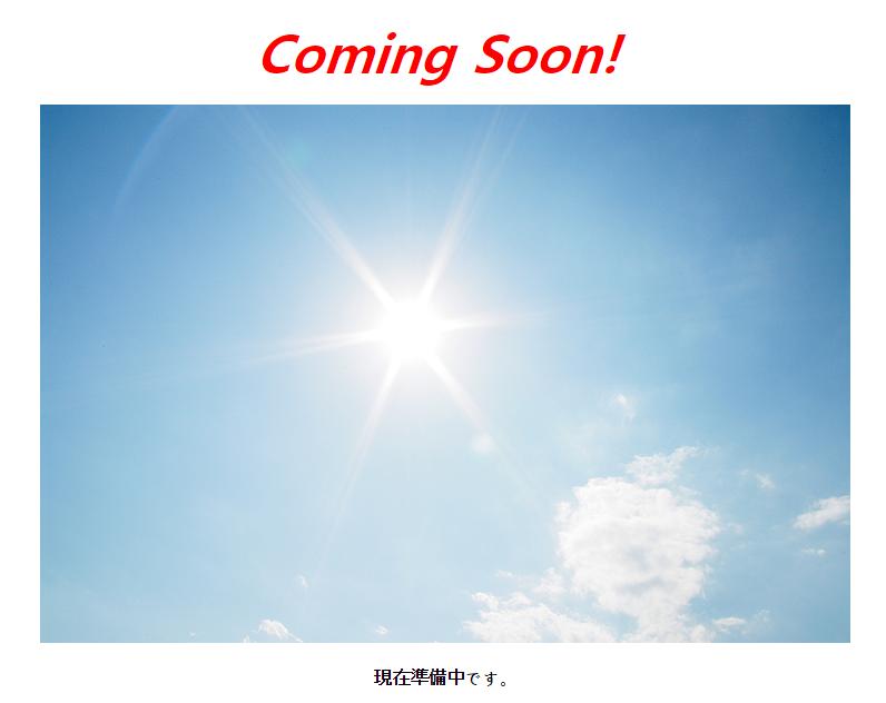 시노다 디스플레이는 언젠가 빛을 볼 수 있을까?
