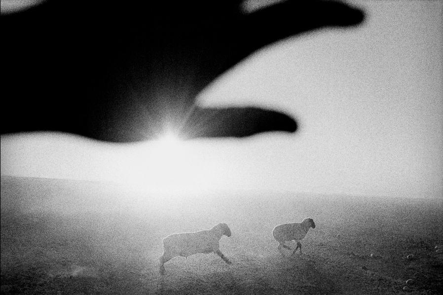 Matt Black (맷 블랙), Photographer.