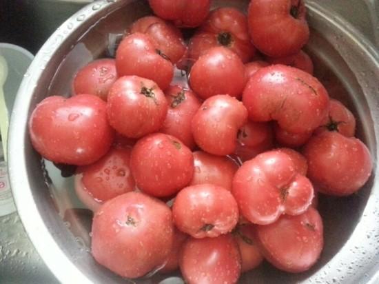 따끈따끈한 토마토 주스 집에서 만들어 먹기