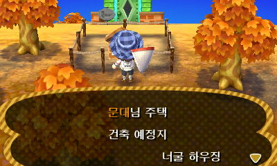 [3DS] 튀어나와요 통물의 숲 5일차.