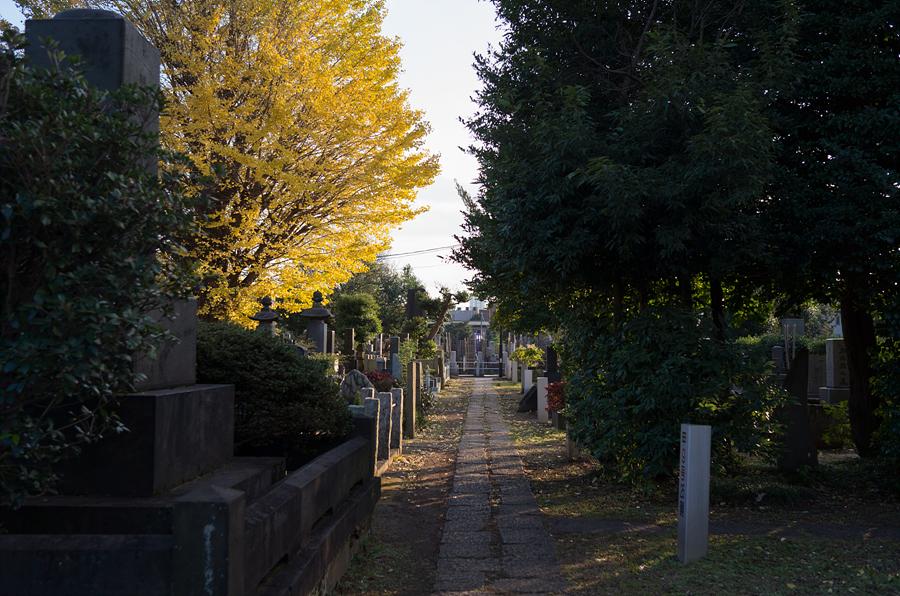 151212, 일본여행 #24 야나카 묘원 (Yanaka Rei..