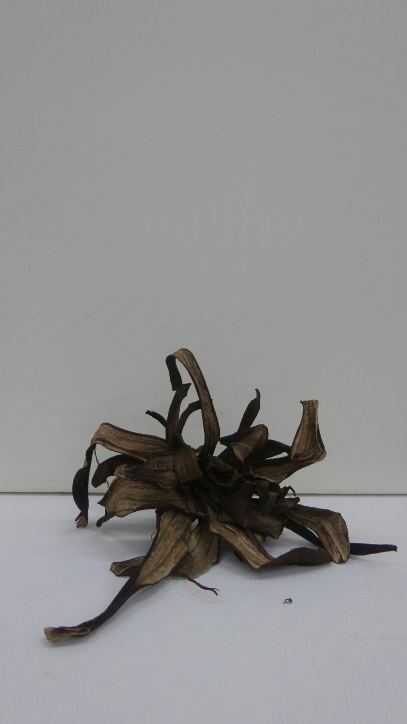 Dry banana sculpture