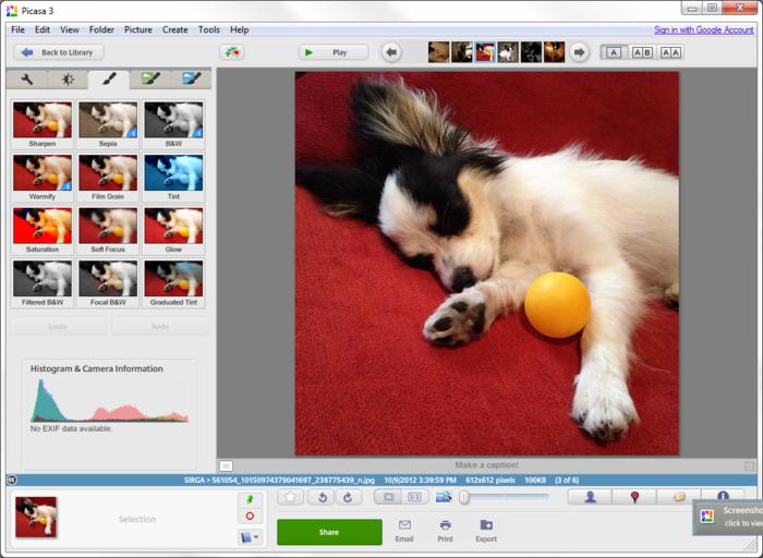 구글 사진 관리 프로그램 피카사, 운영 종료