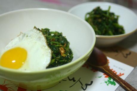 하루나무침과 비빔밥, 봄이로다.