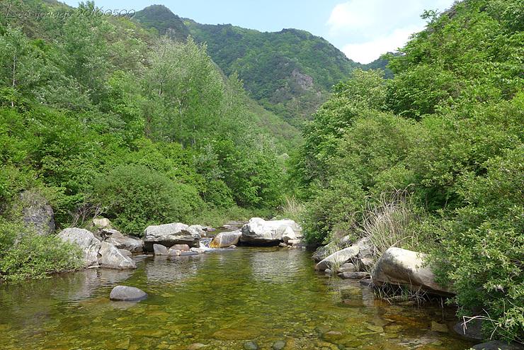 계곡 풍경