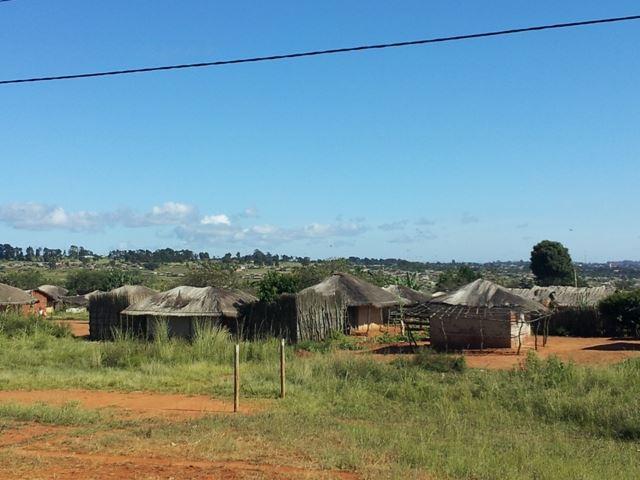 [모잠비크] 리싱가 외곽 마을