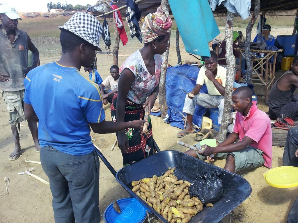 [모잠비크] 사탕수수와 삶은 고구마