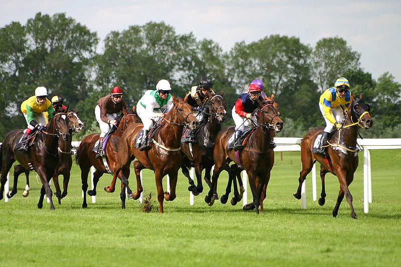 경마 : 競馬 : Horse racing - 취미사회의 경쟁