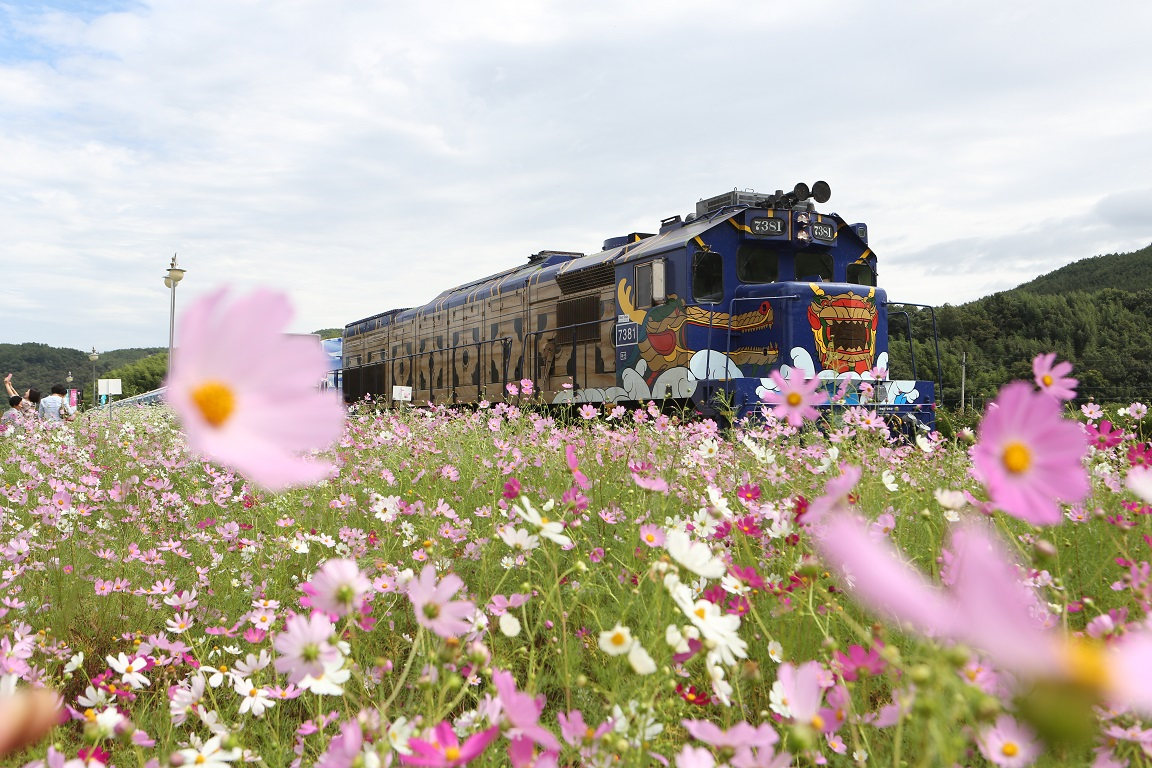 꽃 피는 봄, 관광열차 타고 대한민국을 누벼라!