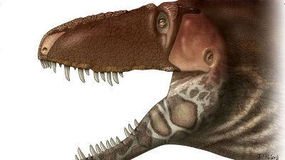 최신 연구 결과를 반영한 티라노사우루스 얼굴이 ..