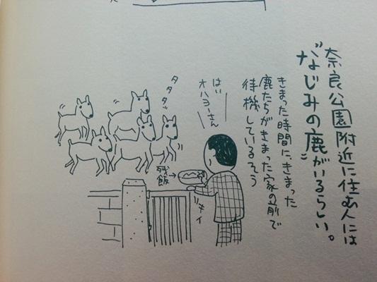 일본 나라의 사슴들도 신규(?)는 가끔 센베 판매 ..