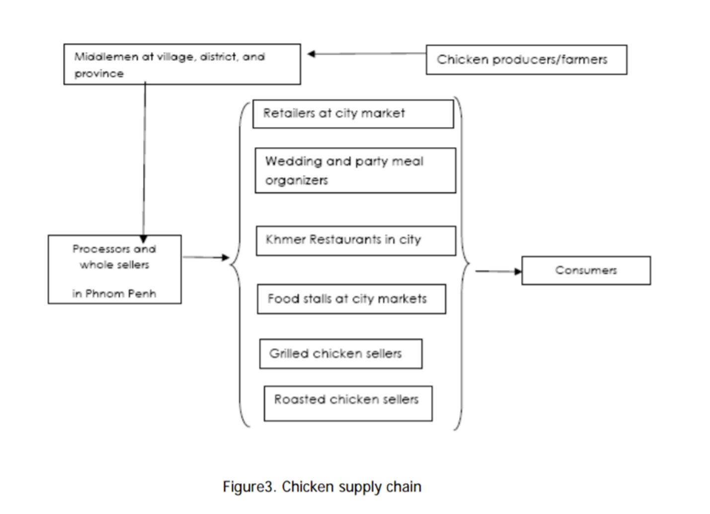 캄보디아 돼지, 닭 유통구조