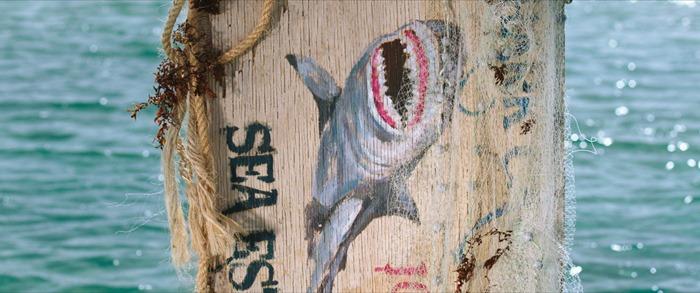 상어가 득시글거리는 수심 47미터