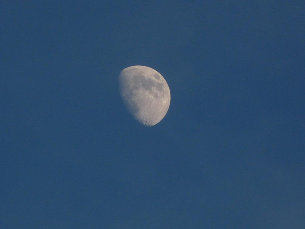 저녁 하늘에 빛나기 시작하는 달