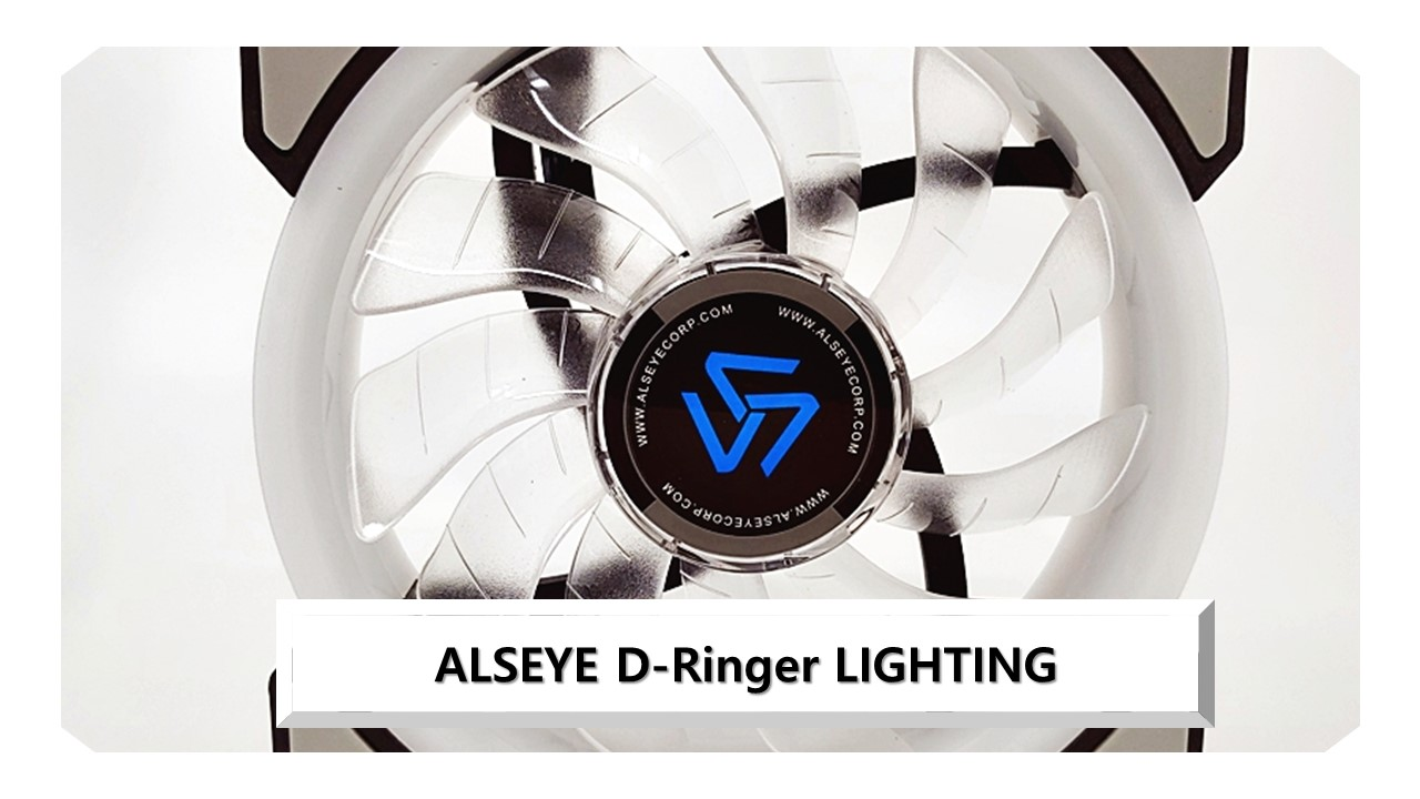 ALSEYE D-Ringer LIGHTING 리뷰