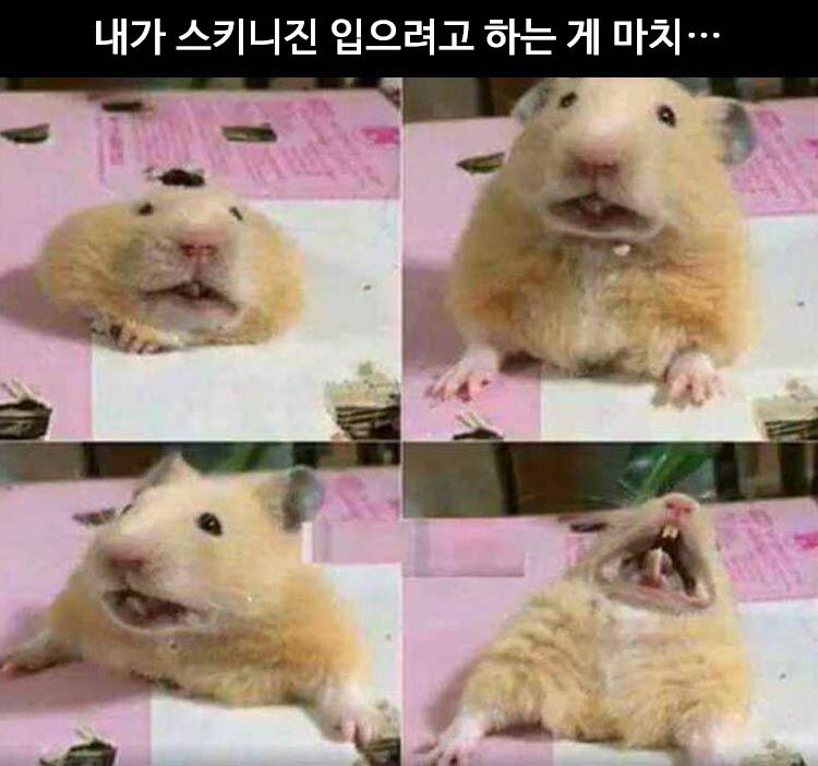 [번역] 청바지 입을 때 공감