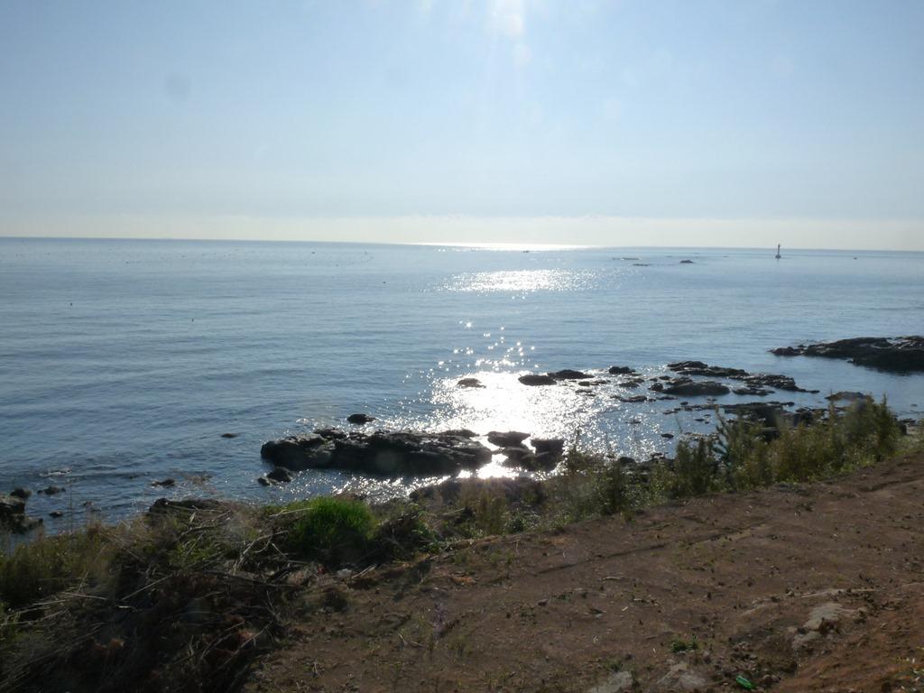 햇살을 받아 반짝이는 송정 바다