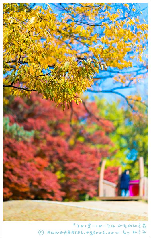 [어린이대공원] 가을 단풍 나들이 - 2