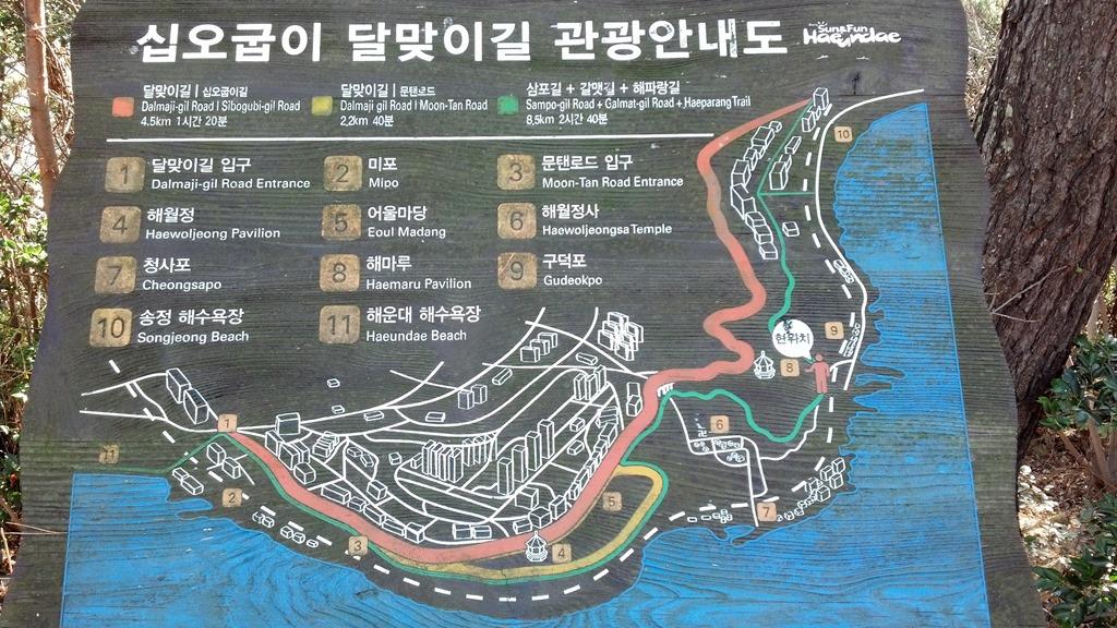 해운대~송정 십오굽이 해파랑 삼포 달맞이 문탠로..