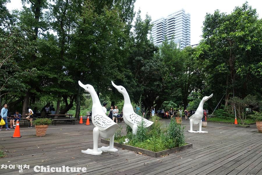 타이베이 송산문화공원의 평화로운 춤추는 사람들..